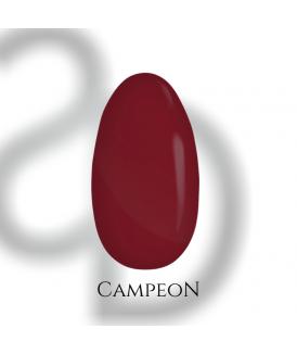 vsp - CAMPEON